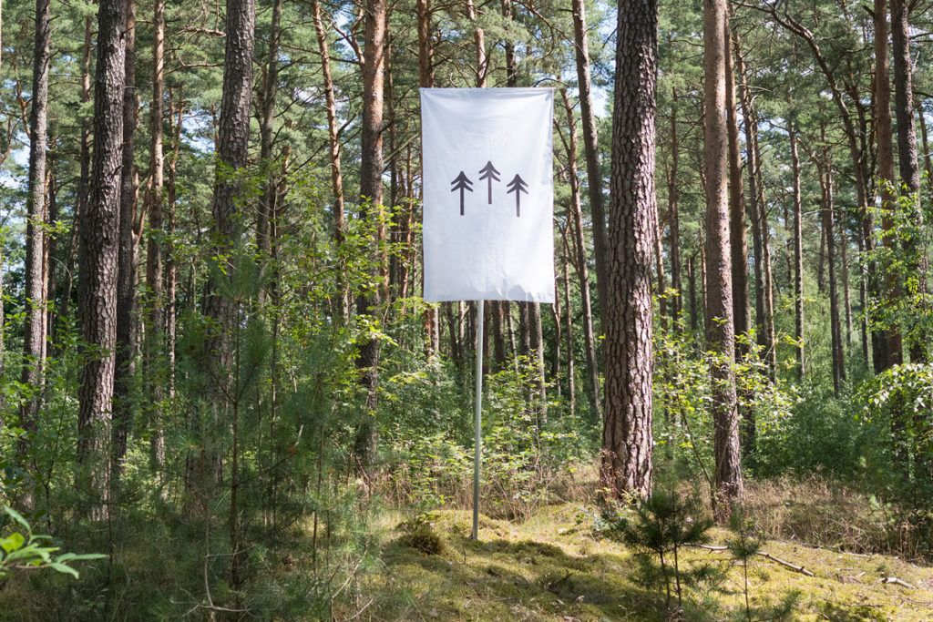 The Self-Owning Augmented Forest: Foto: Terra0.